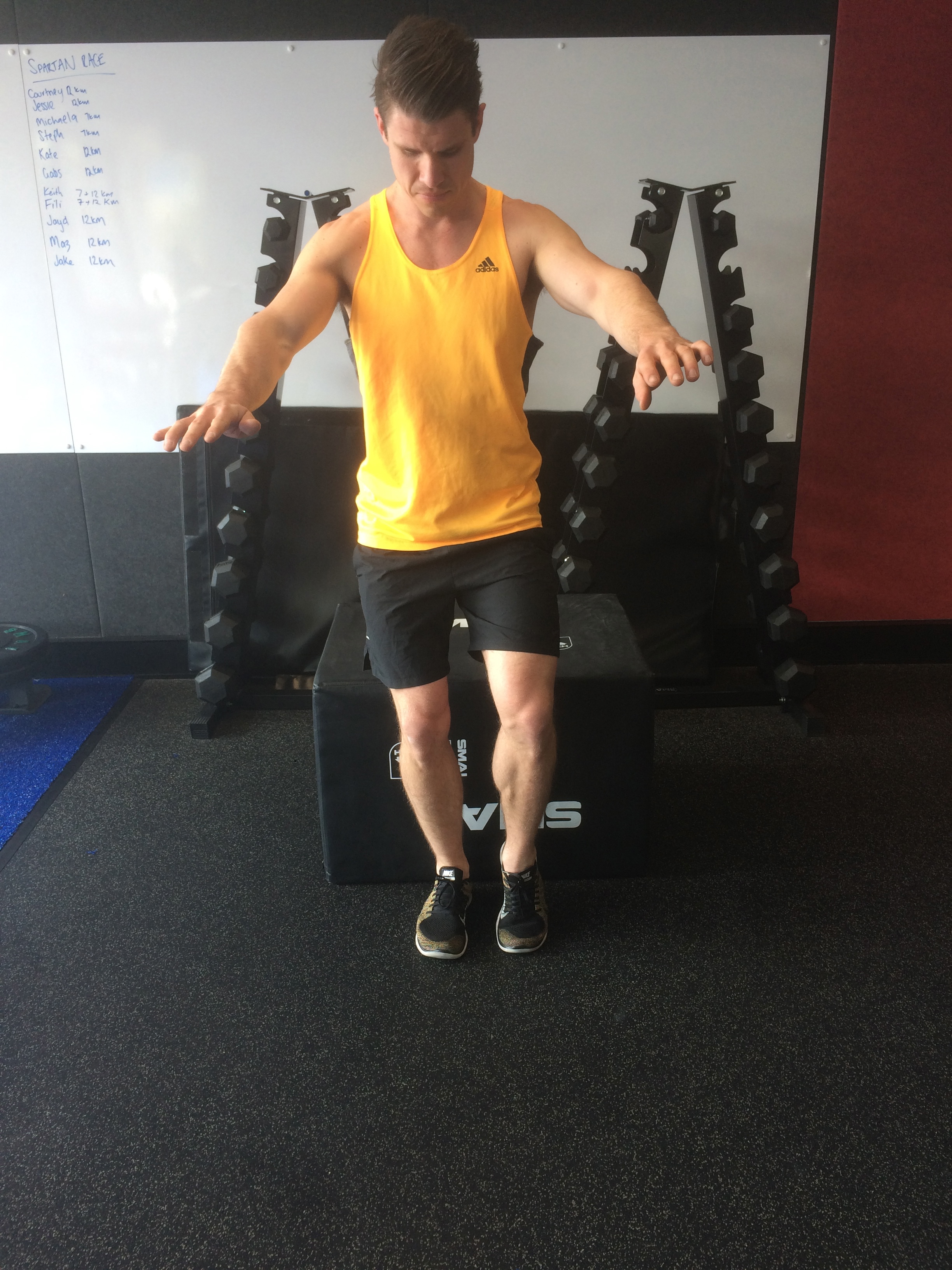 learn how to progress your squat at the function movement club, local northern beachs chiropractor also servicing gladesvilee