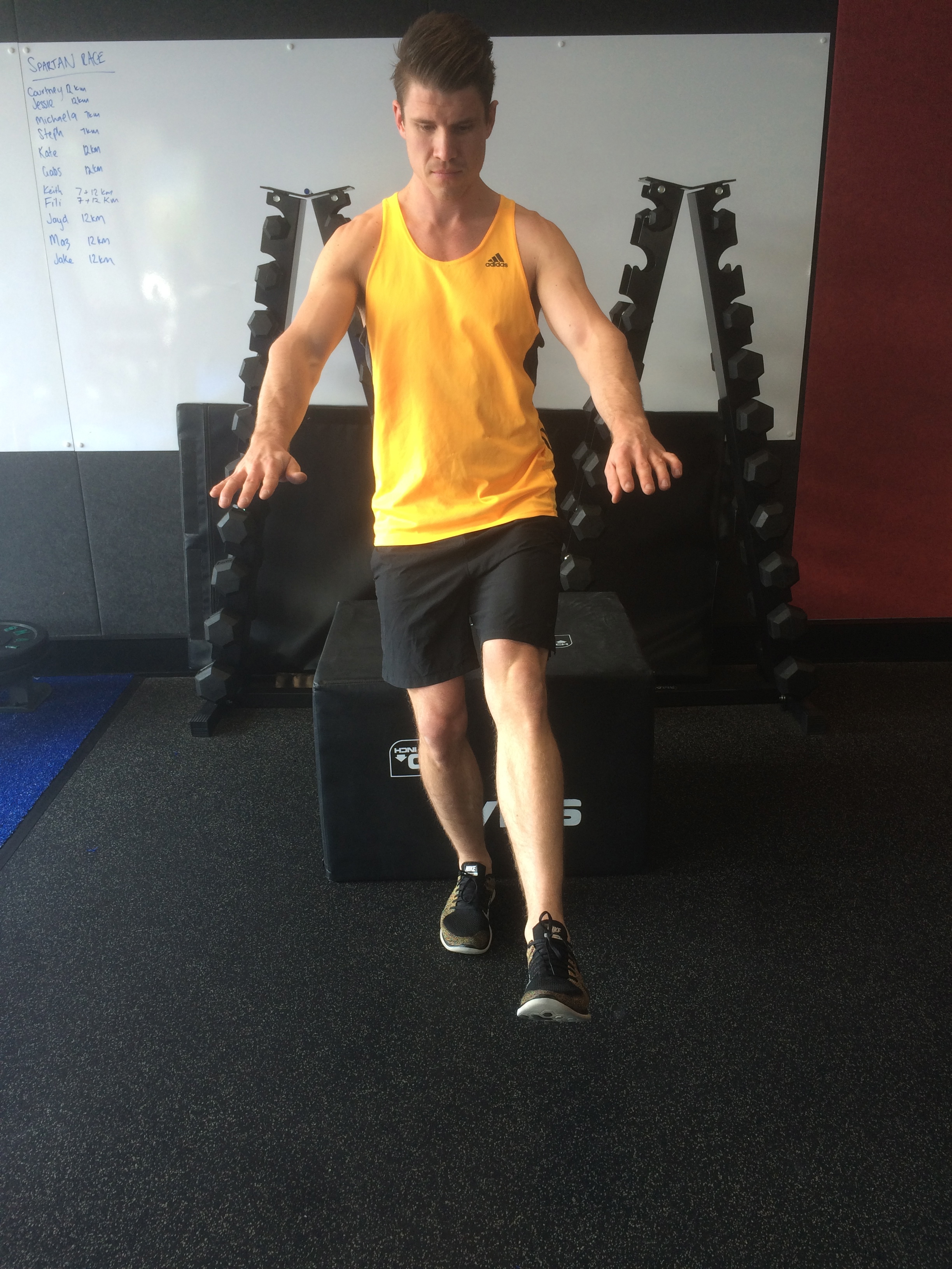 single leg squat progression at the functional movement club, your local northern beaches chiropractor also servicing the gladeville area