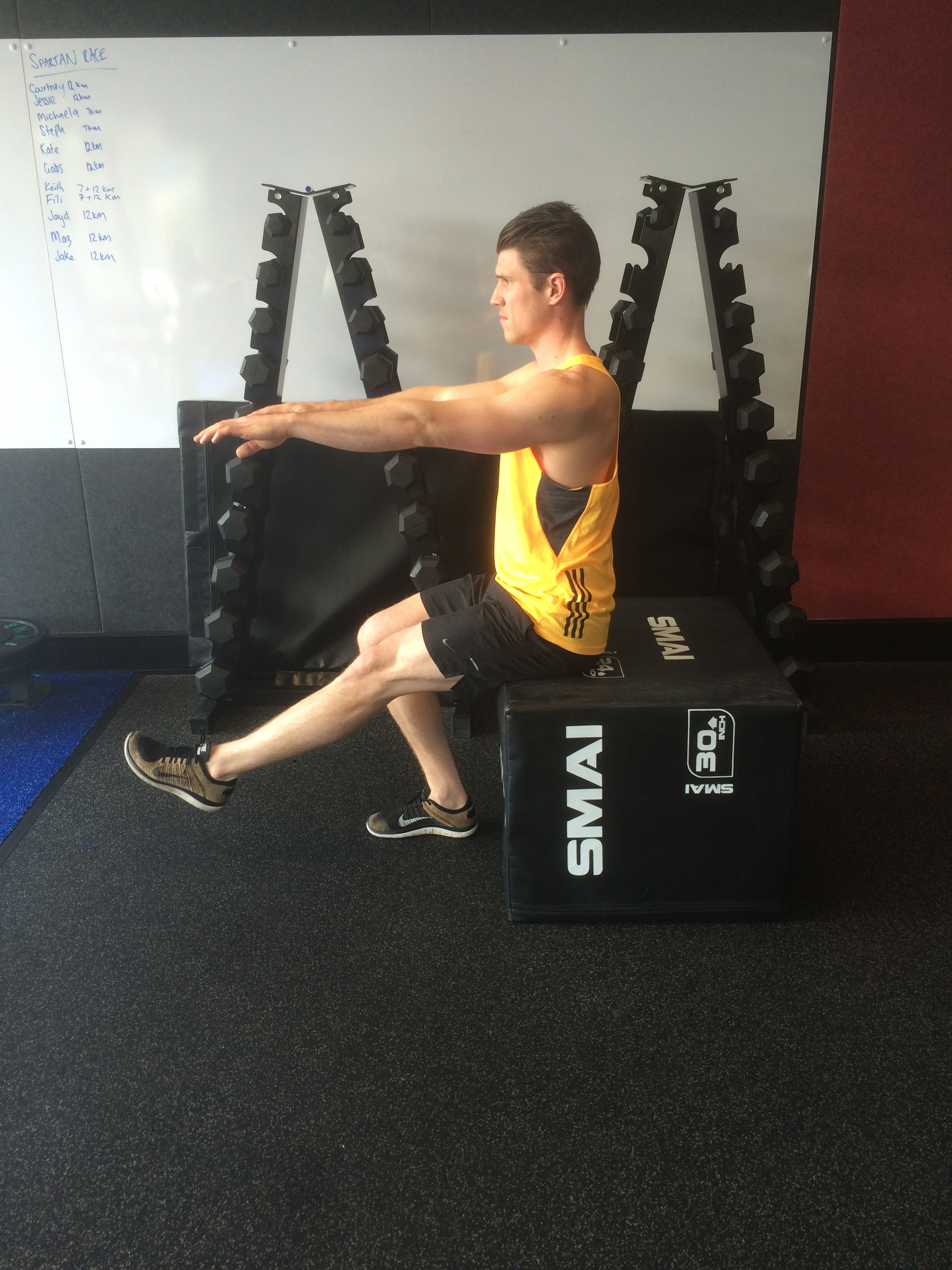 squat technique revision at the functional movement club, your local northern beachs chiropractor servicing the gladesville area